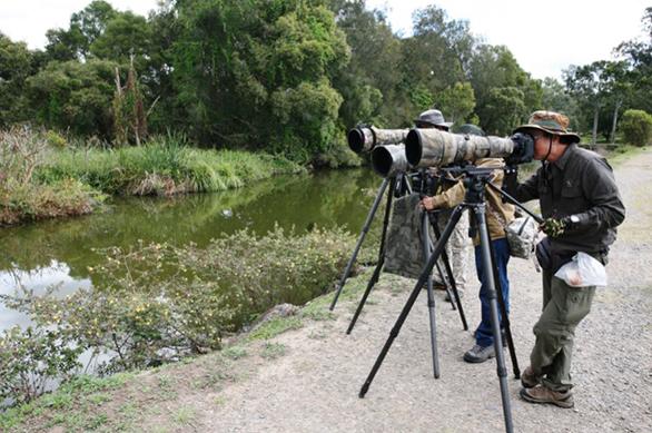 informative-bird-walks